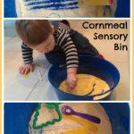 Cornmeal Sensory Bin