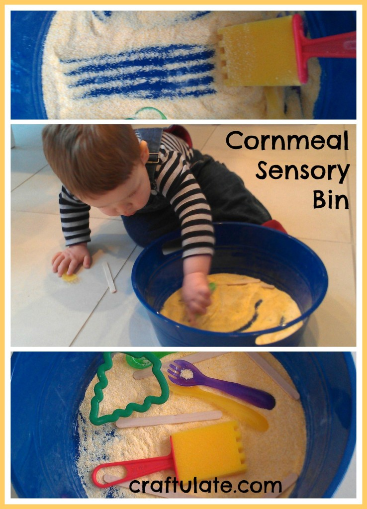 Cornmeal Sensory Bin - perfect for toddlers