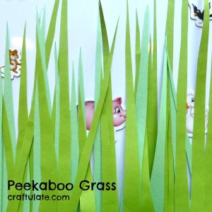 Peekaboo Grass Game