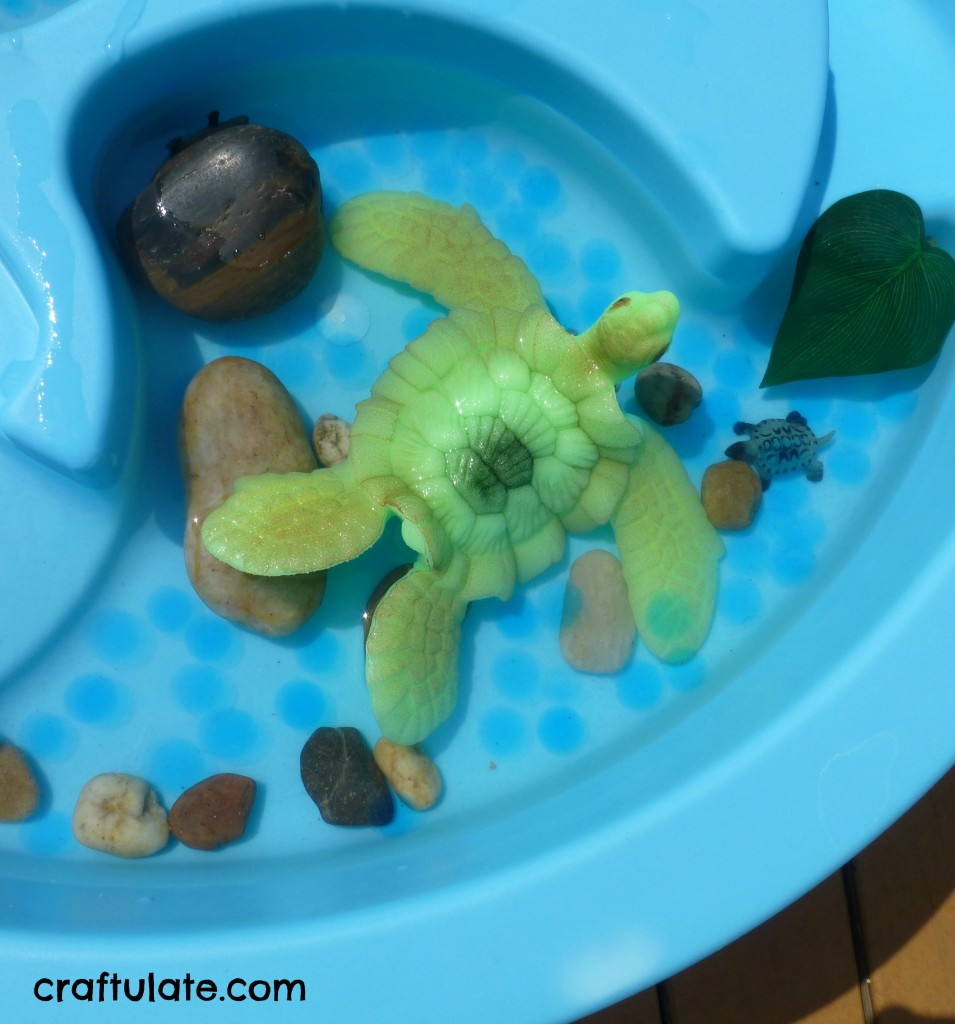 Turtle Themed Water Table