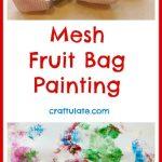Mesh Fruit Bag Painting