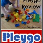 Pleygo Review