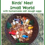Birds' Nest Small World