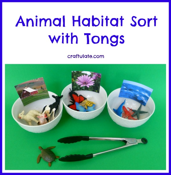Animal Habitat Sort with Tongs