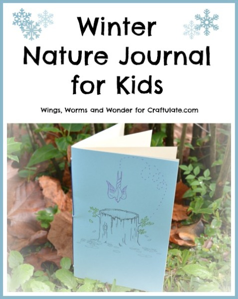 Winter Nature Journal for Kids
