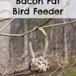 Bacon Fat Bird Feeder