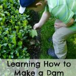 Learning How to Make a Dam