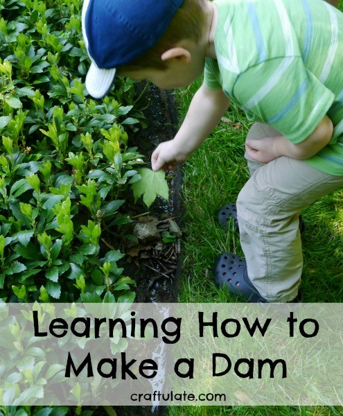 Learning How to Make a Dam - a great trial and error exercise for kids!