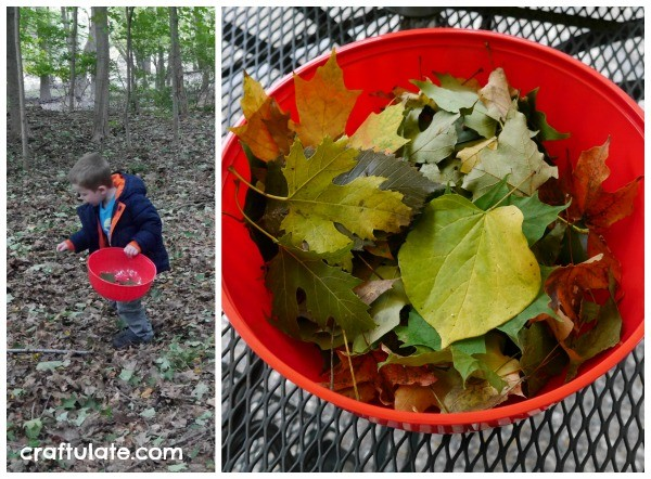 Crushed Leaf Collage for Kids - a fun art activity for the fall!