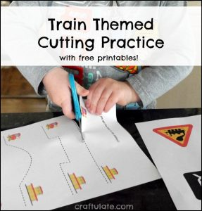 TrainCuttingPracticeM