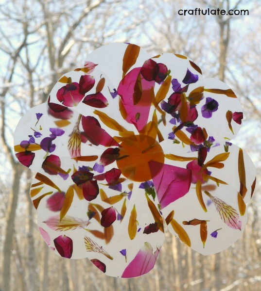 Petal Suncatcher Craft - a beautiful nature craft for kids to make