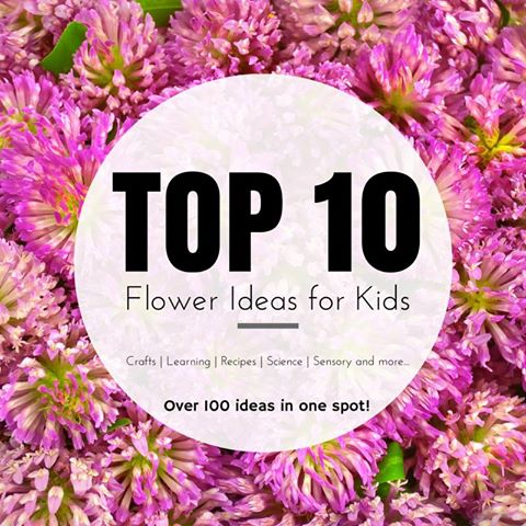 Top 10 Flower Ideas for Kids