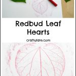 Redbud Leaf Hearts