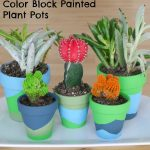 Color Block Painted Plant Pots